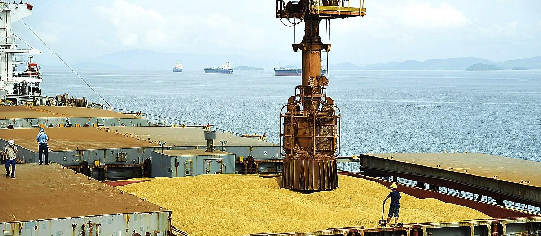 Guerra comercial entre China e Estados Unidos pode beneficiar exportação de soja no Brasil