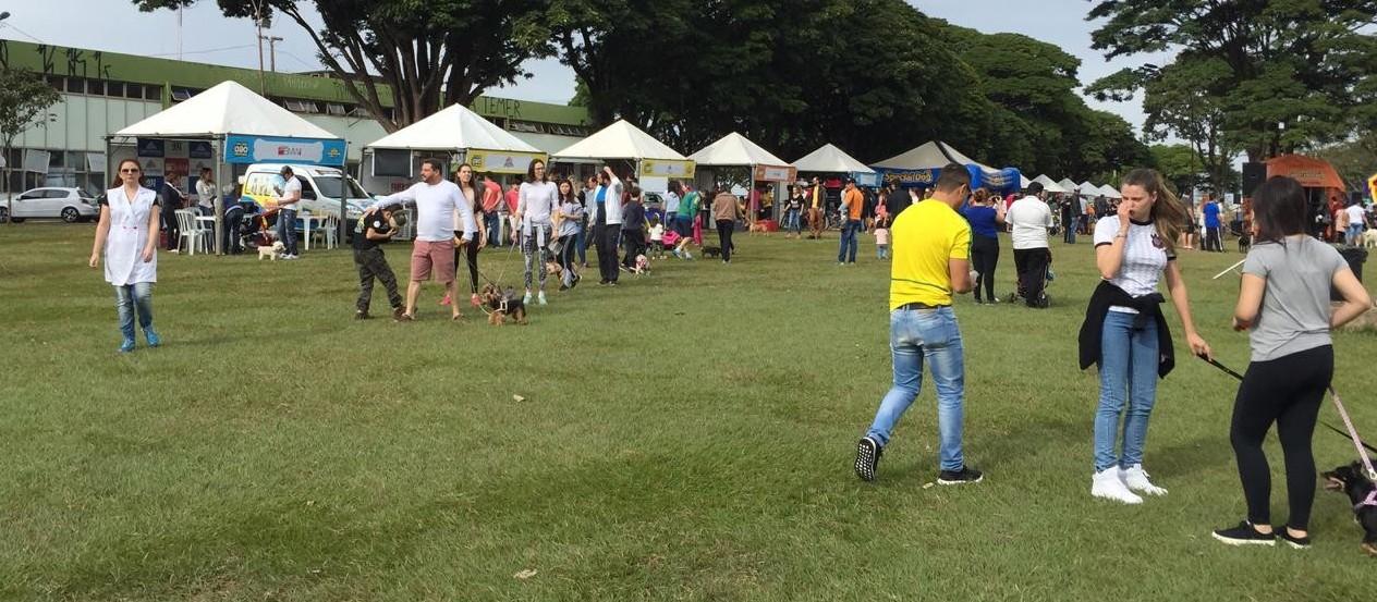 Famílias e seus cachorros aproveitam o Pet Day em Maringá