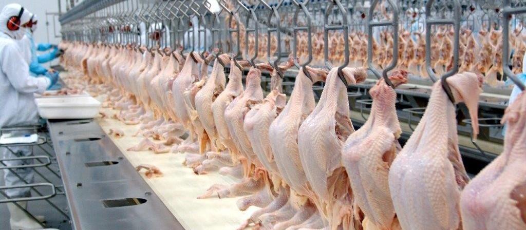 Exportação de carne de frango recua em fevereiro