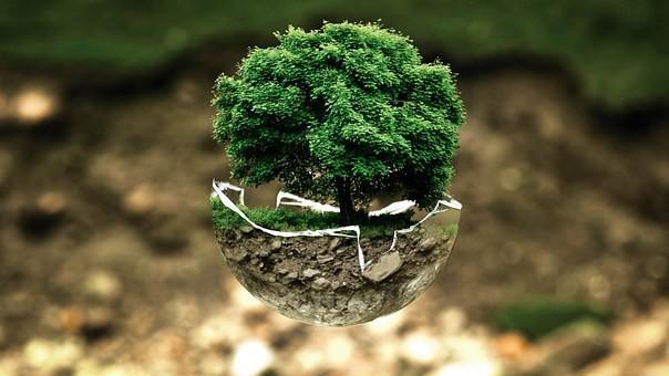 Saiba mais sobre o PIV, o Produto Interno Verde