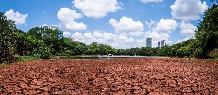 Estiagem: Vegetação avança sobre área que era do lago do Parque do Ingá