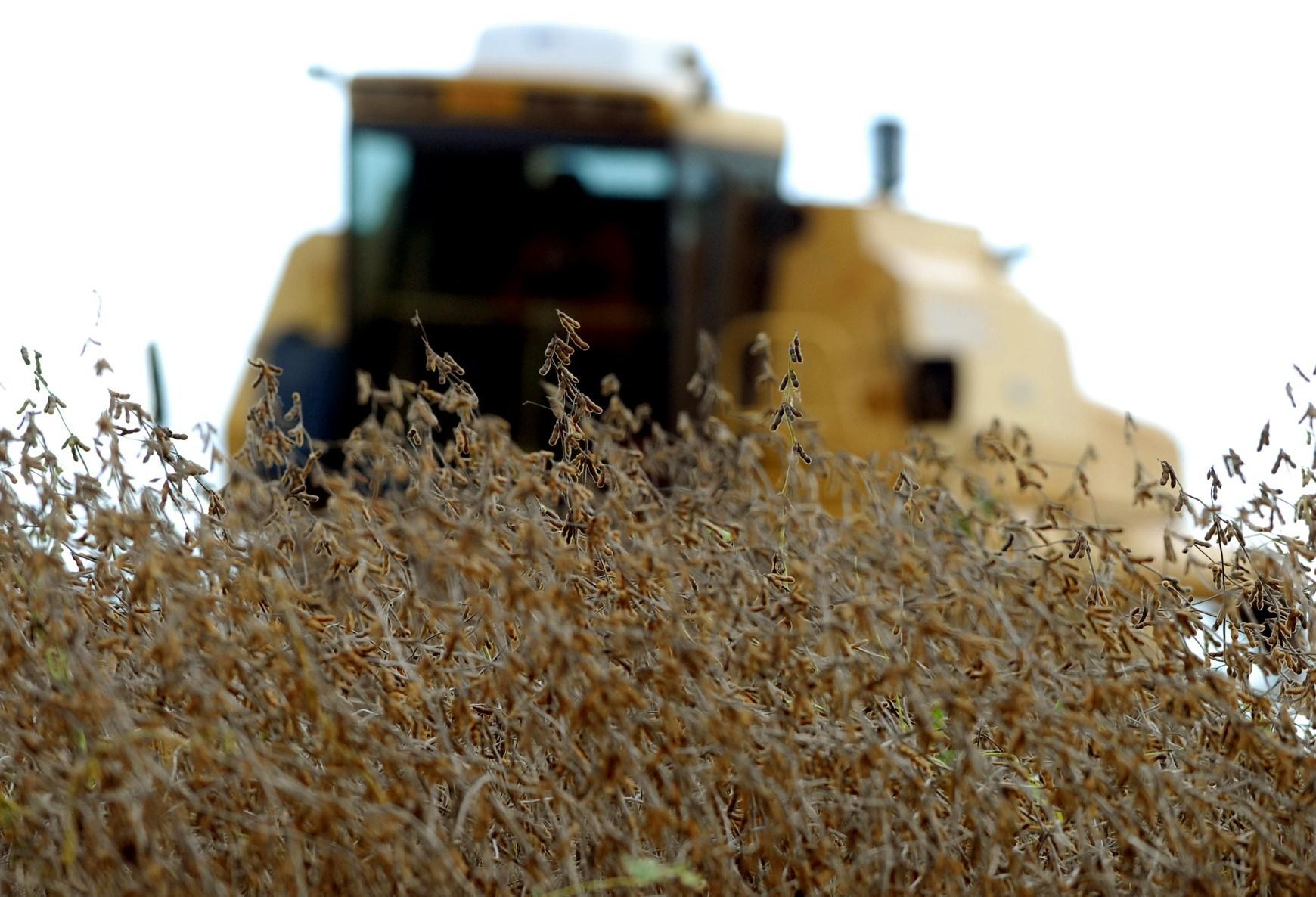 Disputa entre EUA e China eleva o preço da soja no Brasil
