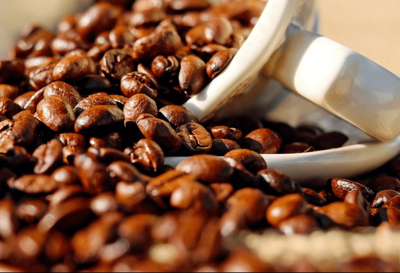 Café em coco custa R$ 6,70 kg em Jacarezinho