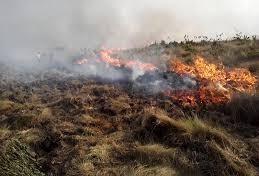 Bombeiros combatem incêndio às margens da BR-376