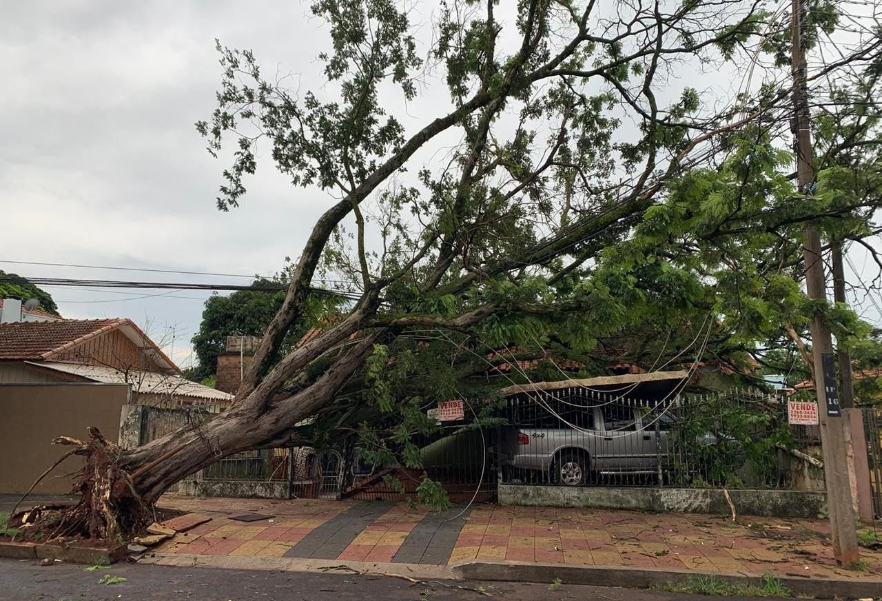 Chuva deixa 10 mil consumidores sem energia em Maringá