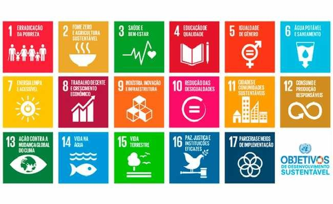 Empresa oferece workshops e treinamentos sobre política de sustentabilidade