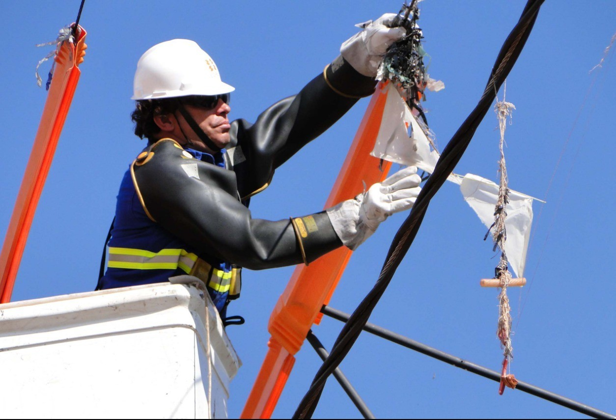 Mutirão de limpeza na rede elétrica será realizado em 23 municípios