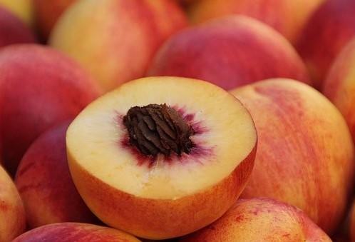 Colheita do pêssego segue com boa produção no Paraná
