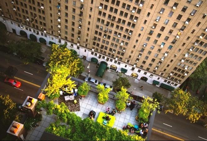 Novas construções em Nova Iorque deverão ter telhados verdes ou painéis solares
