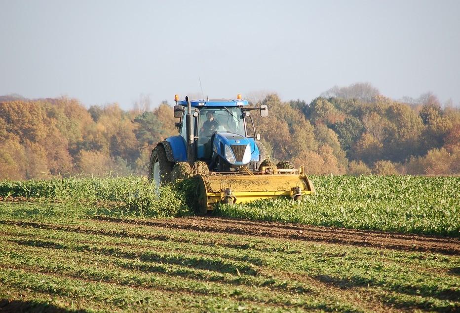 25% da área da soja já foi colhida na região de Maringá
