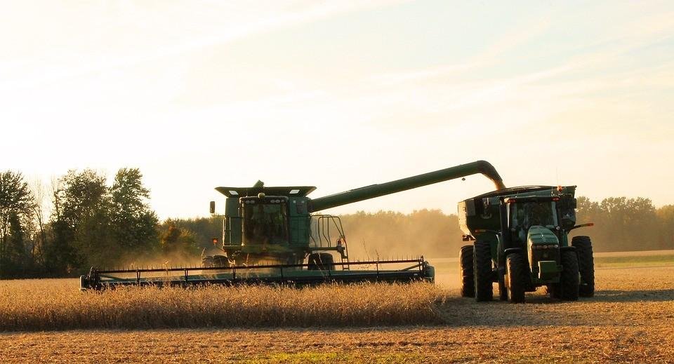 Clima é favorável para todas as atividades agrícolas