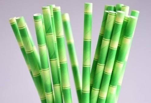 Canudos de bambu substituem os de plástico