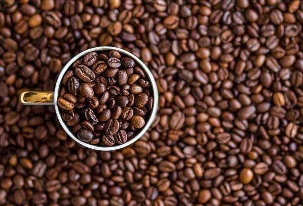 Café em coco custa R$ 6,35 Kg na região de Jacarezinho