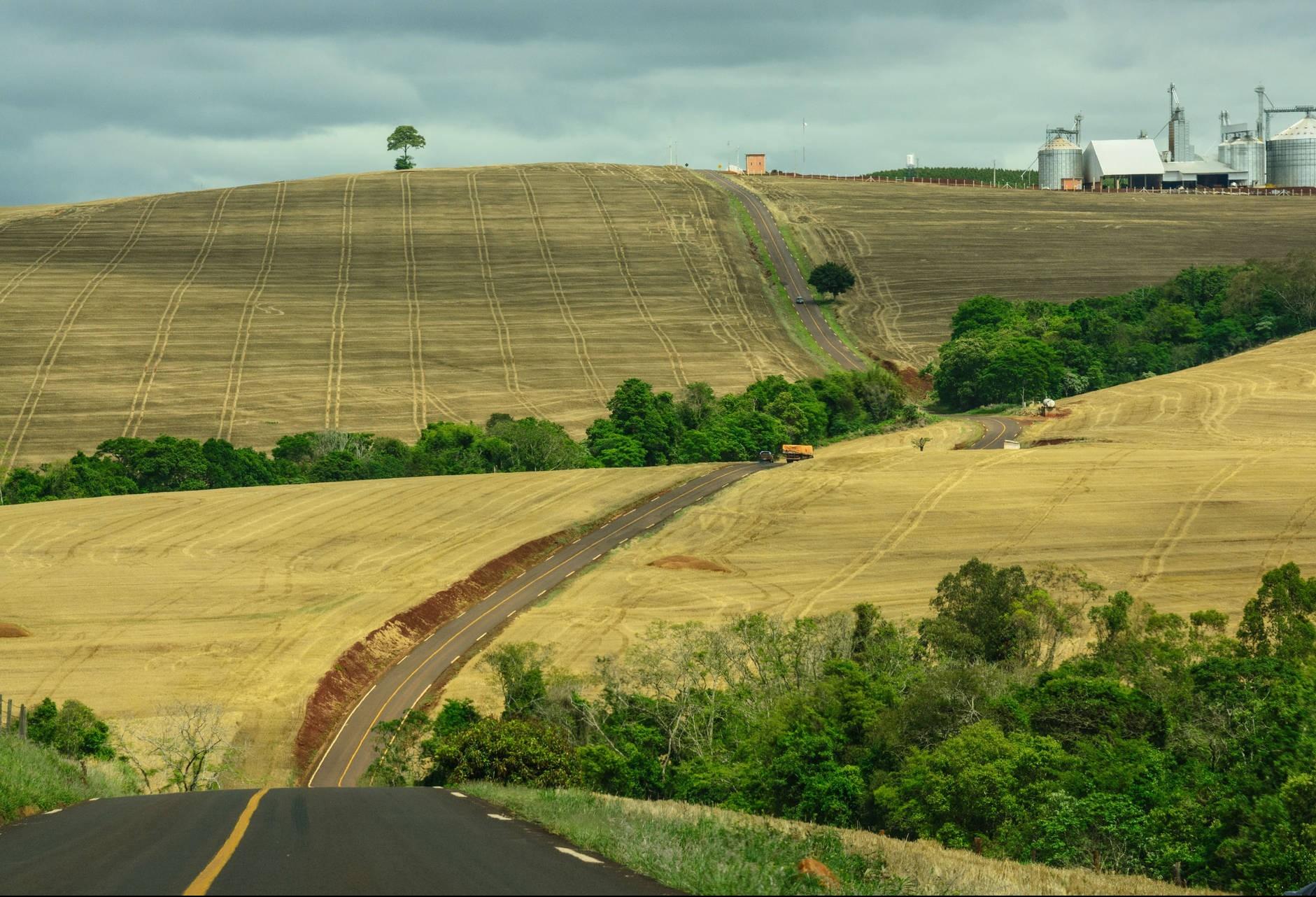 Volume de crédito rural com taxas de juros do Plano Agrícola cresce 19%