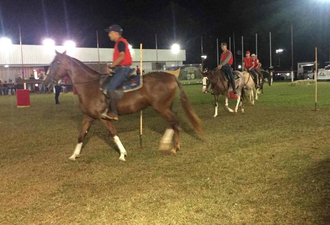 Começa julgamento da raça mangalarga na Expoingá