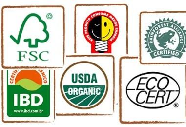 Importância da certificação ambiental para as organizações