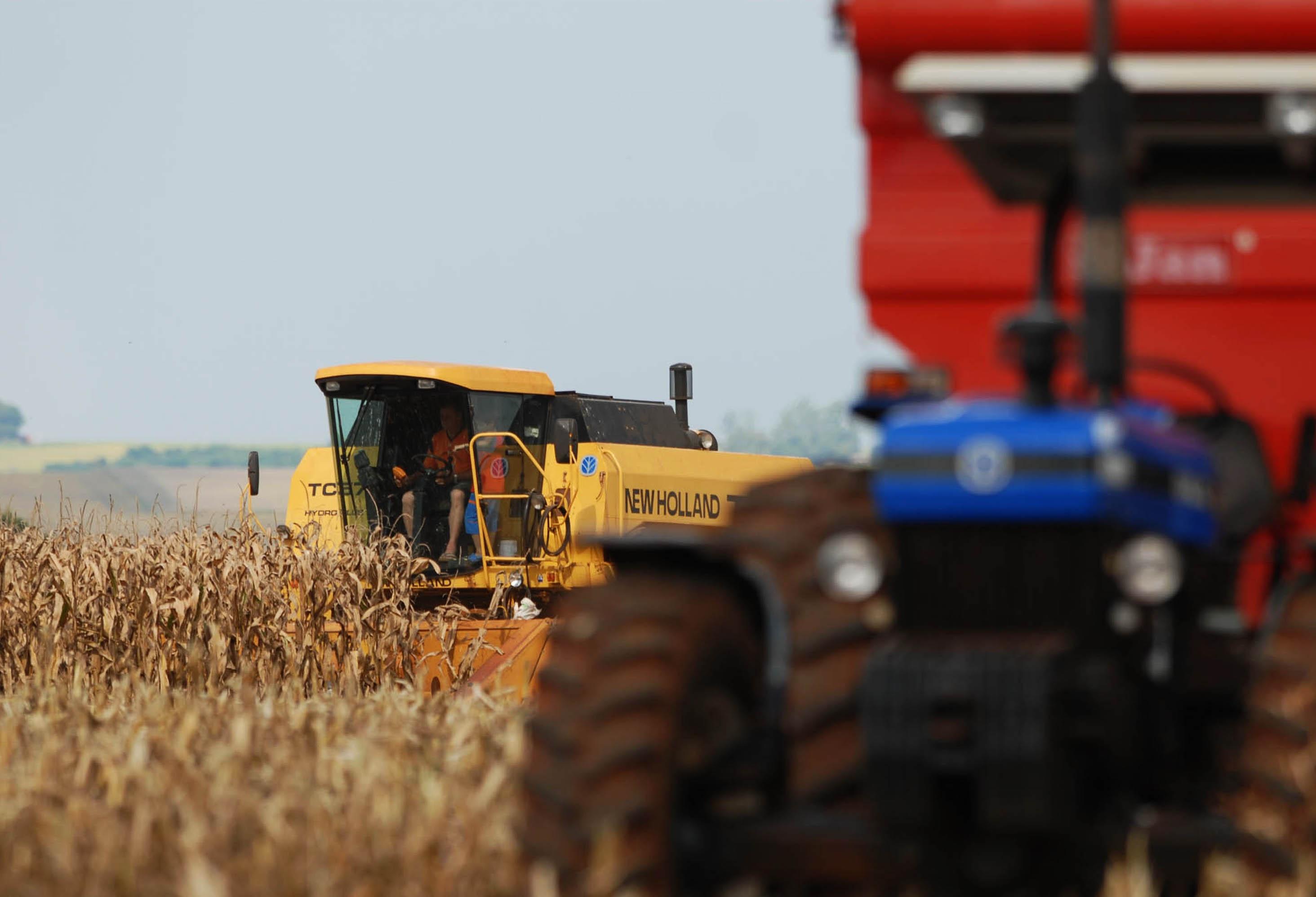 Brasil é líder na produção e exportação de produtos agrícolas