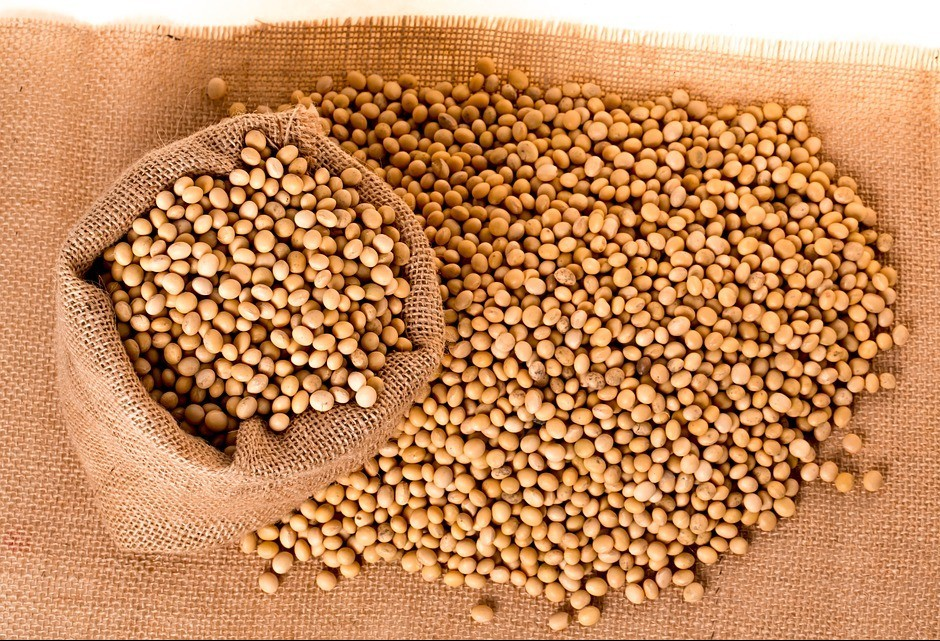 Soja custa R$ 75,74 a saca de 60 kg