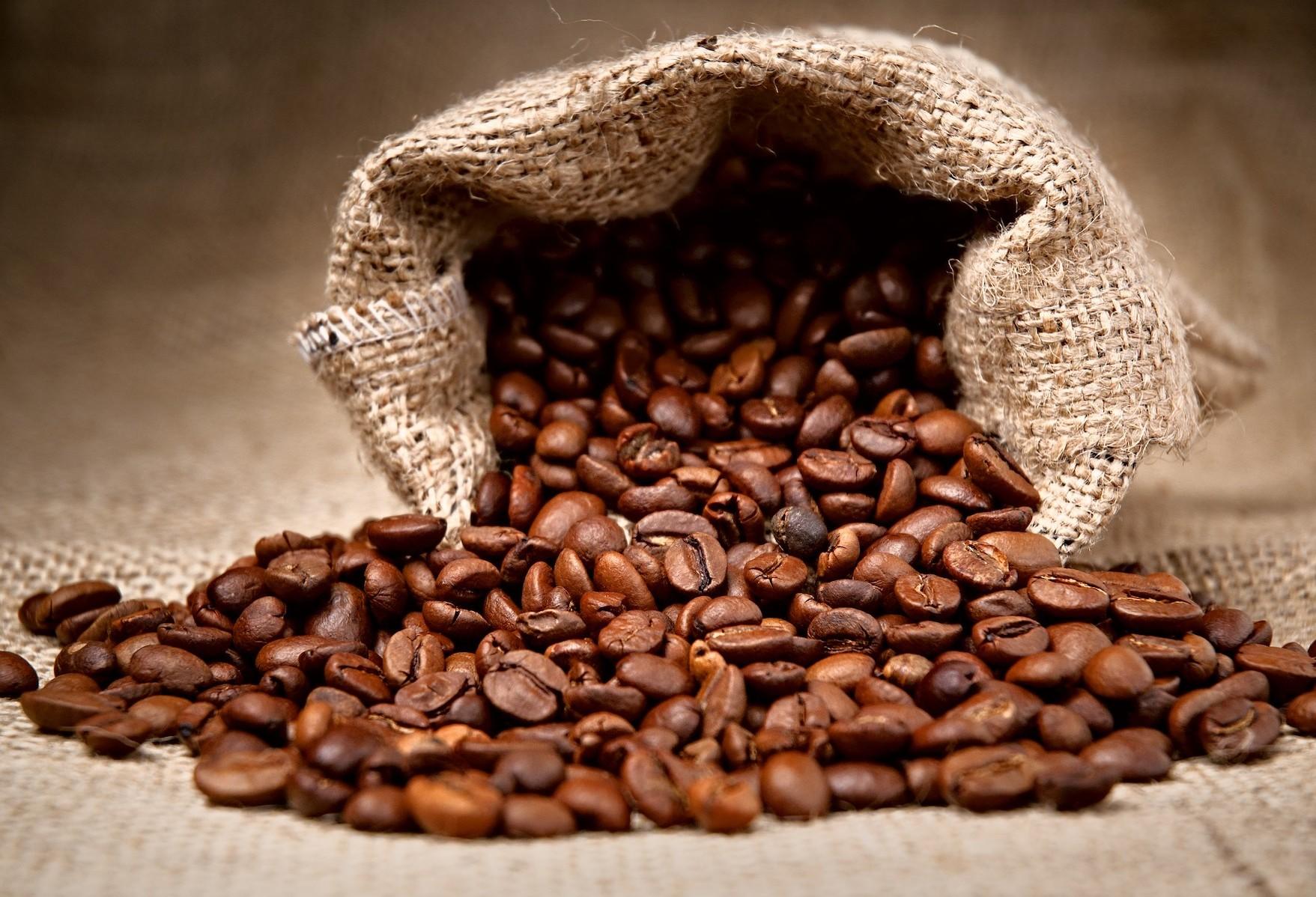Saca do café custa R$ 369 na região de Maringá