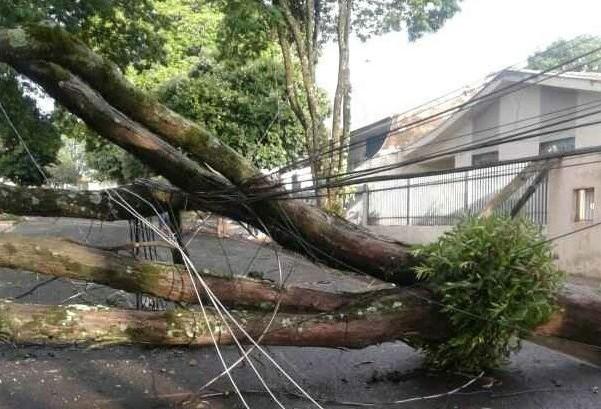 Oito postes quebraram durante o temporal em Maringá