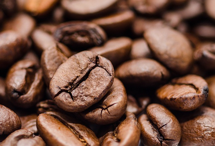 Concurso premia qualidade do café no Paraná
