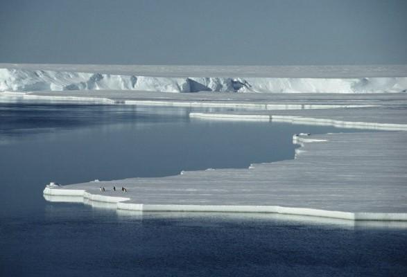 Degelo do ártico permite navegação de forma mais curta