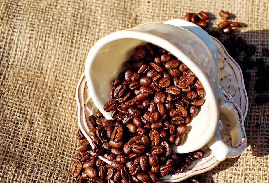 Café em coco custa R$ 6,40 kg em Maringá