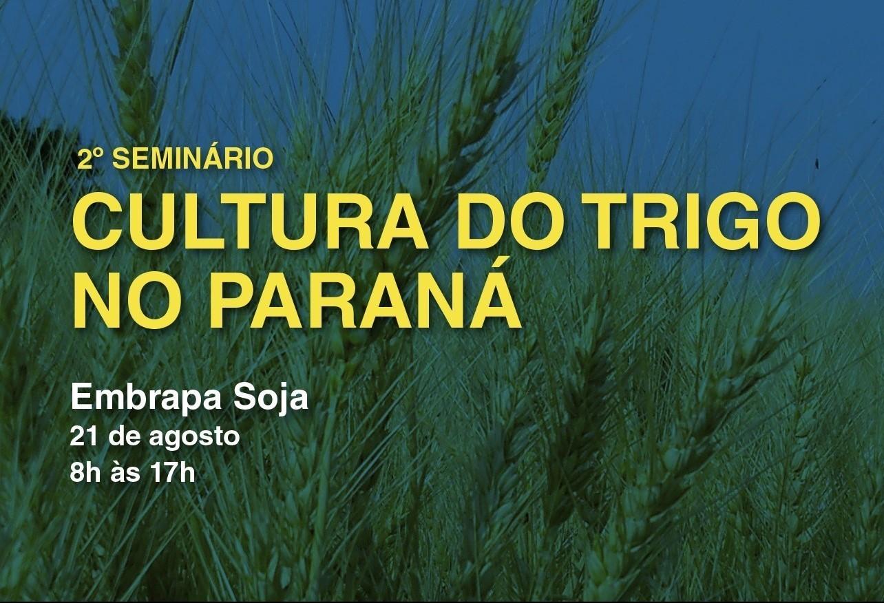 2º Seminário da Cultura do Trigo no Paraná inicia nesta quarta-feira (21)