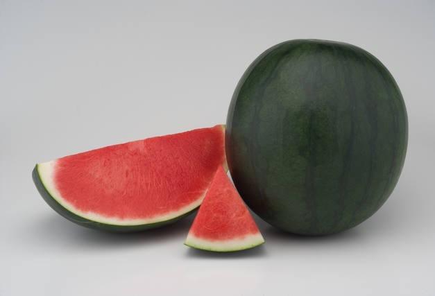 Melancia com menos sementes e mais compactas chegam ao mercado brasileiro