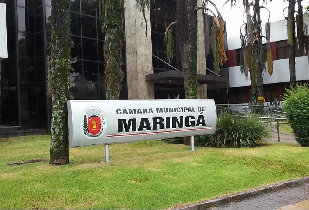 Câmara aprova lei que exige indicação de faixa etária para exposições artísticas em Maringá