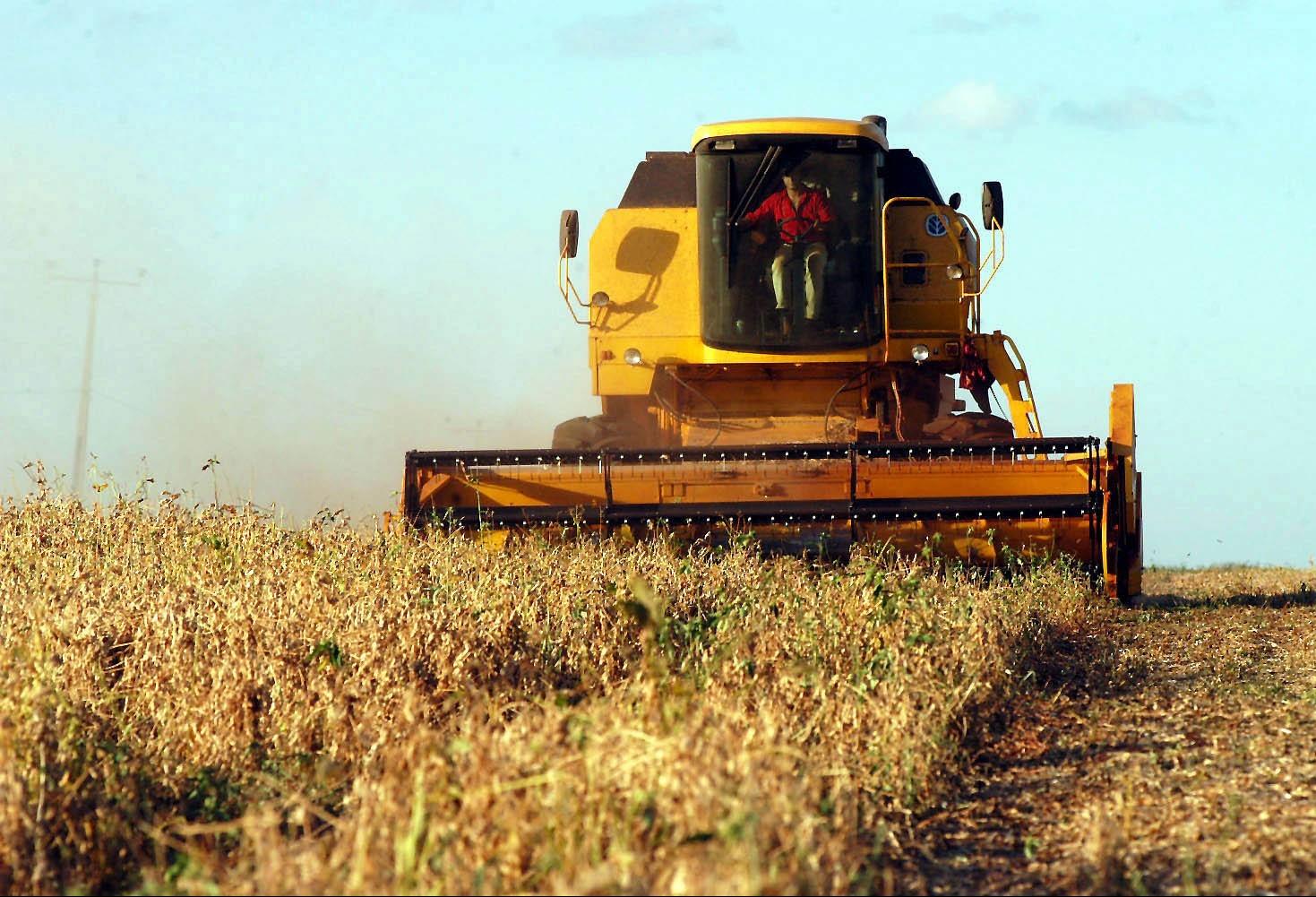 Colheita da soja segue com boa produtividade