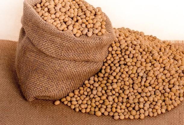 Saca da soja custa R$ 69,50 em Campo Mourão