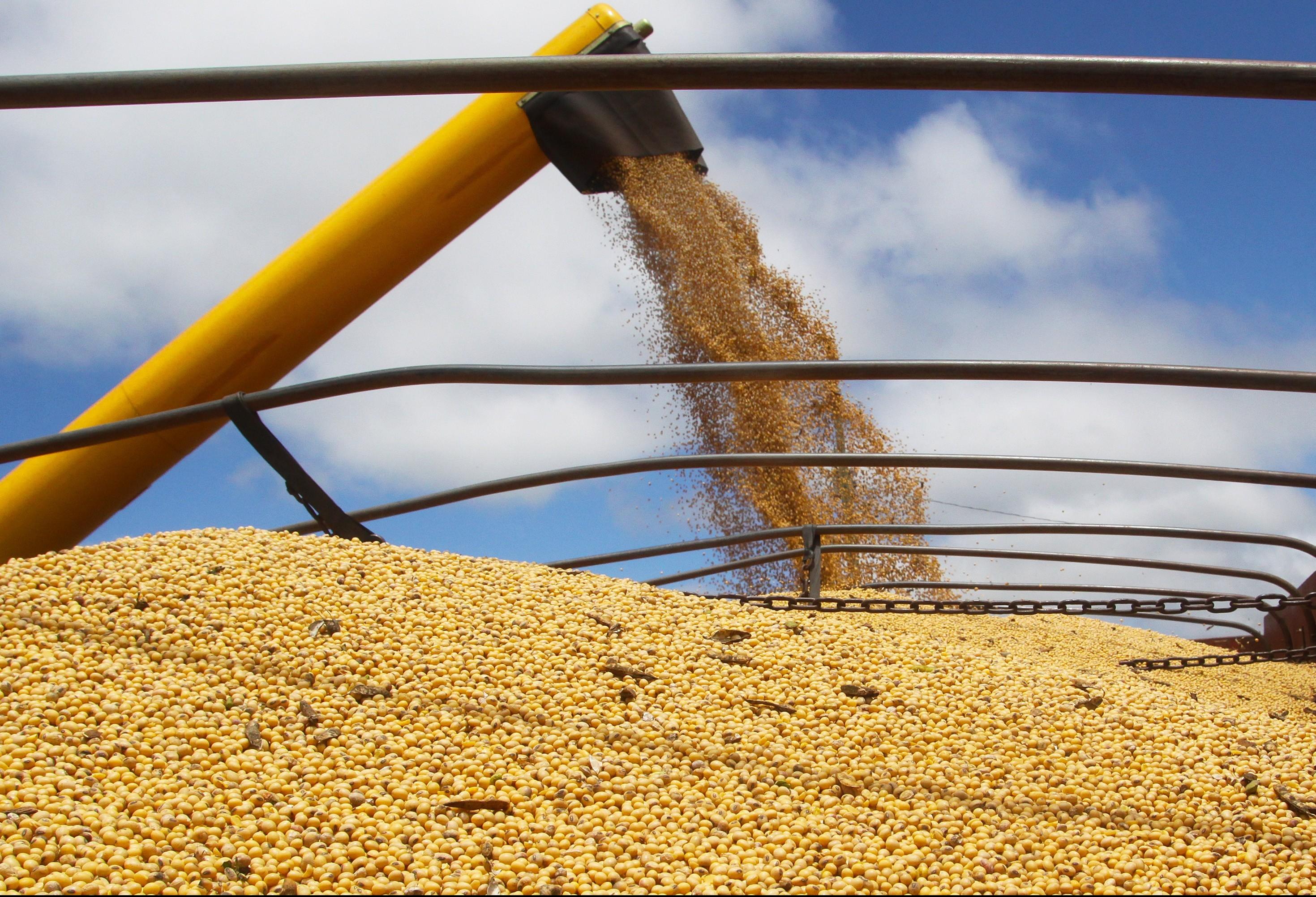 Preços agrícolas seguem em alta no Paraná