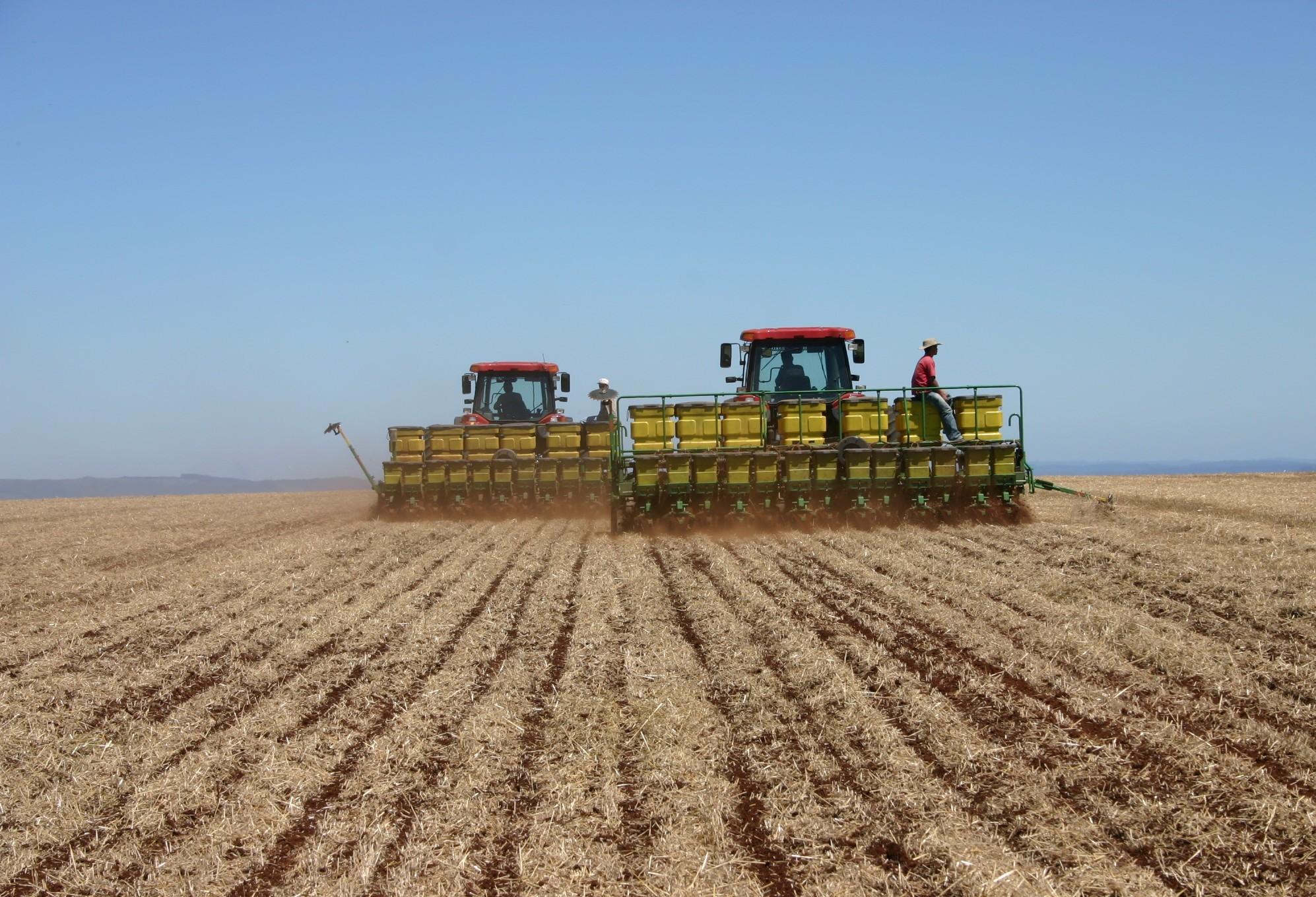 Por conta da umidade, trabalhos no campo estão paralisados