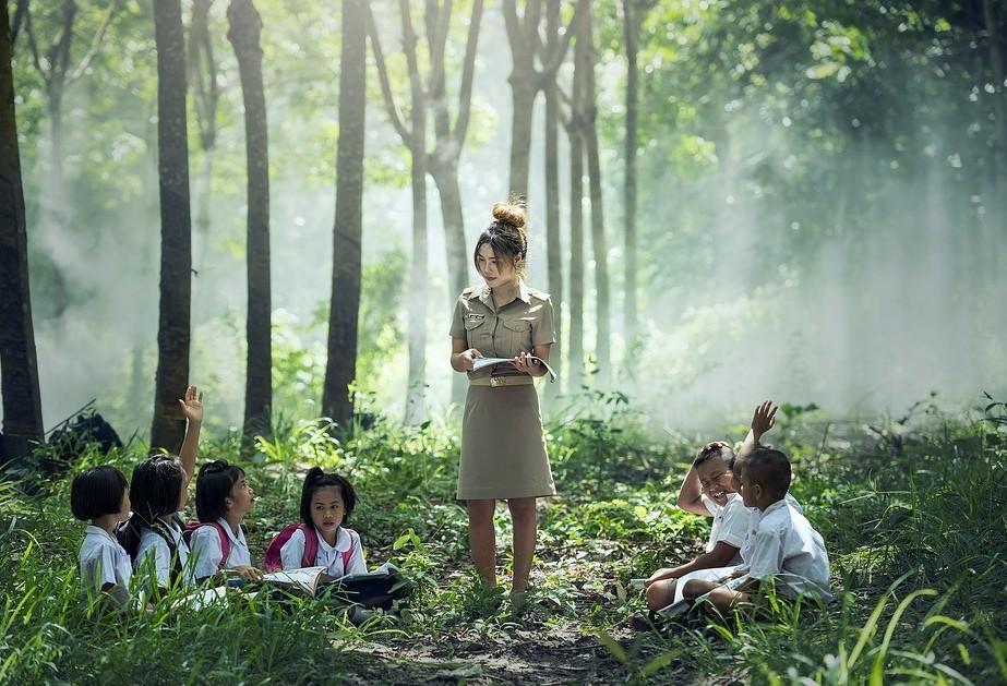'Creche da floresta' busca ensinar crianças com produtos encontrados na natureza