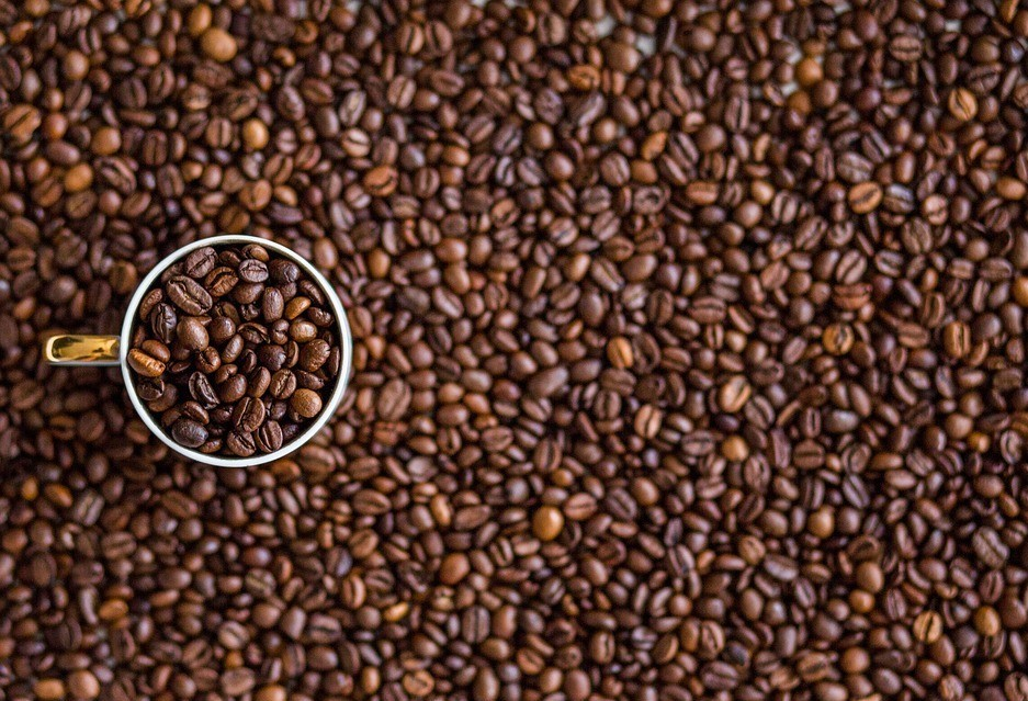 Café em coco custa R$ 6,20 o quilo em Maringá e Apucarana