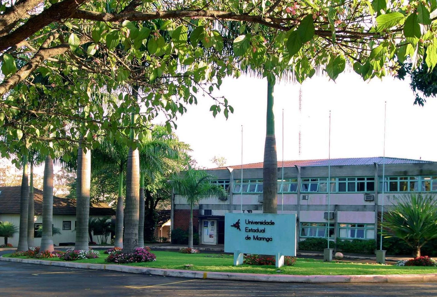 Estudante da UEM vai representar o Brasil na Organização dos Estados Americanos