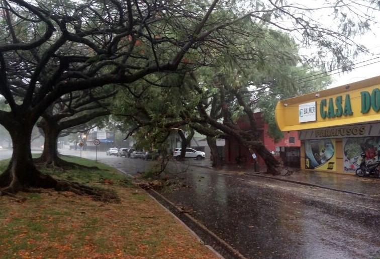 Chuva provoca estragos em Maringá