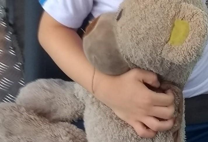 Comunidade de Maringá se mobiliza para encontrar urso de criança com autismo