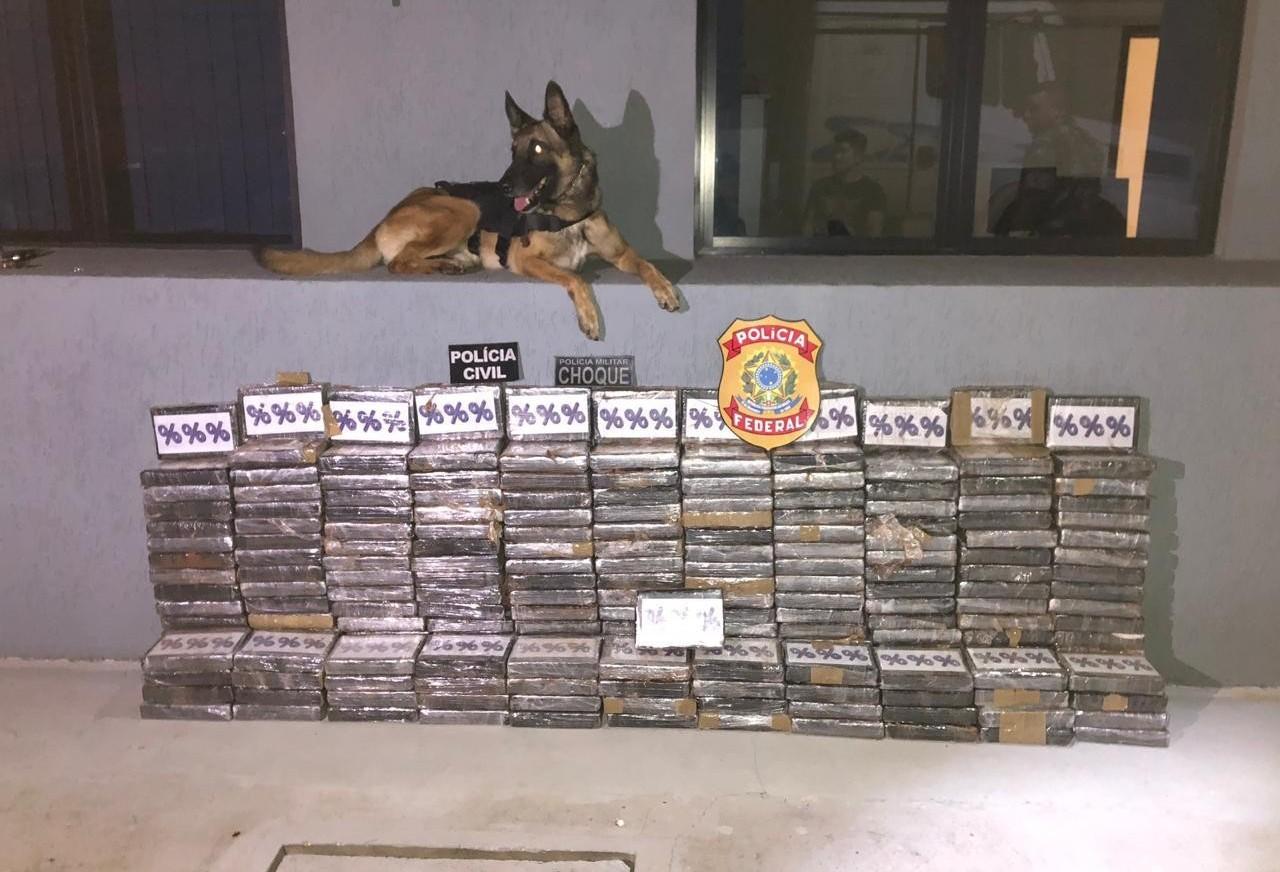 Polícia Federal apreende 233 kgs de cocaína em pó