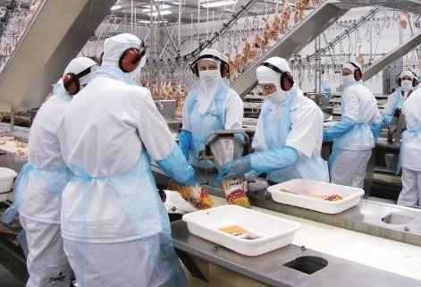 Paraná quer saber posição do Governo Federal em relação à carne de frango produzida no estado