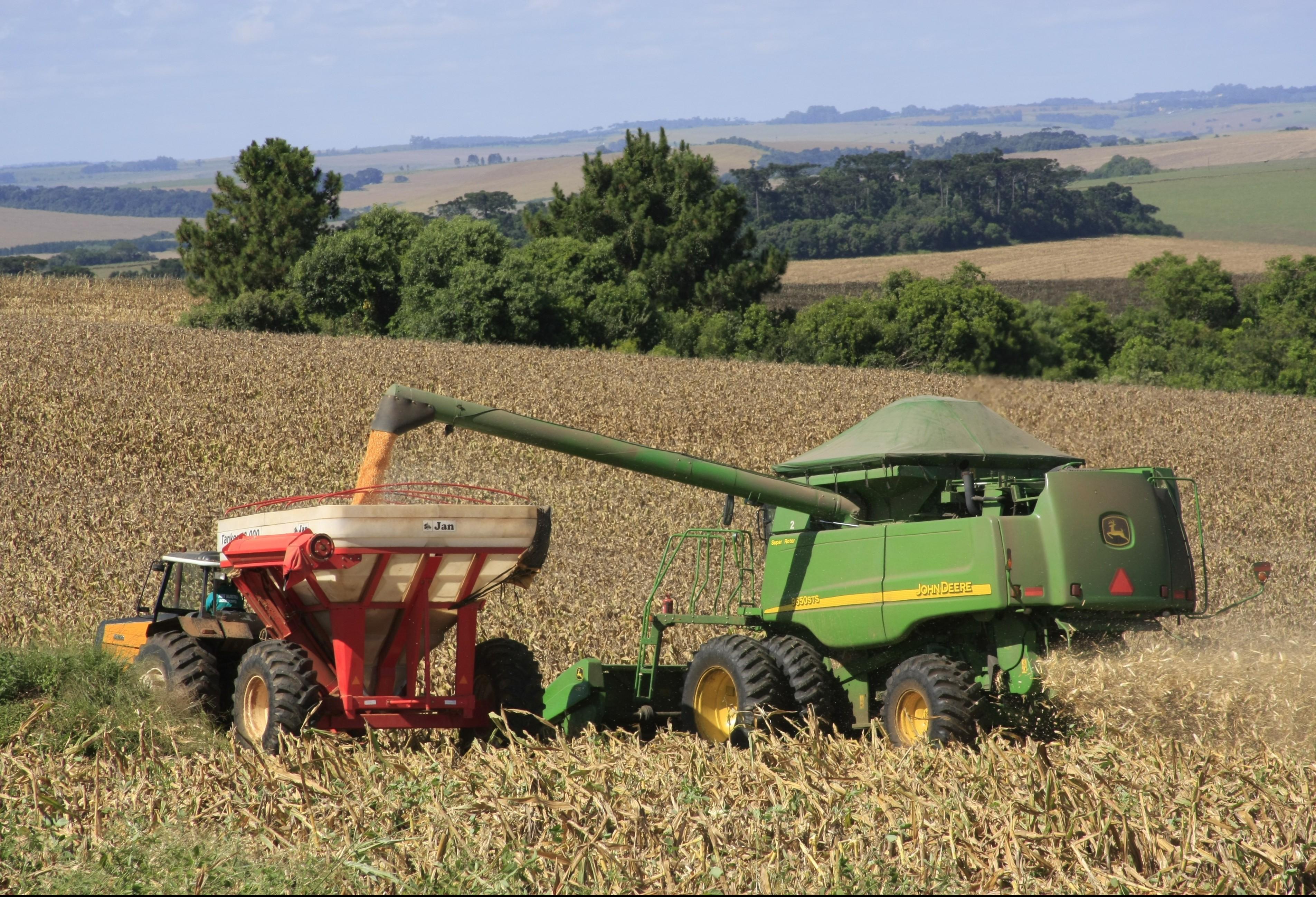 20% da soja plantada no Paraná já foi colhida