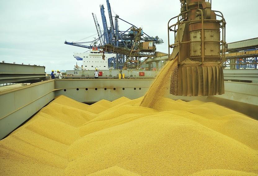 Brasil está mais próximo dos EUA na liderança de produção de soja