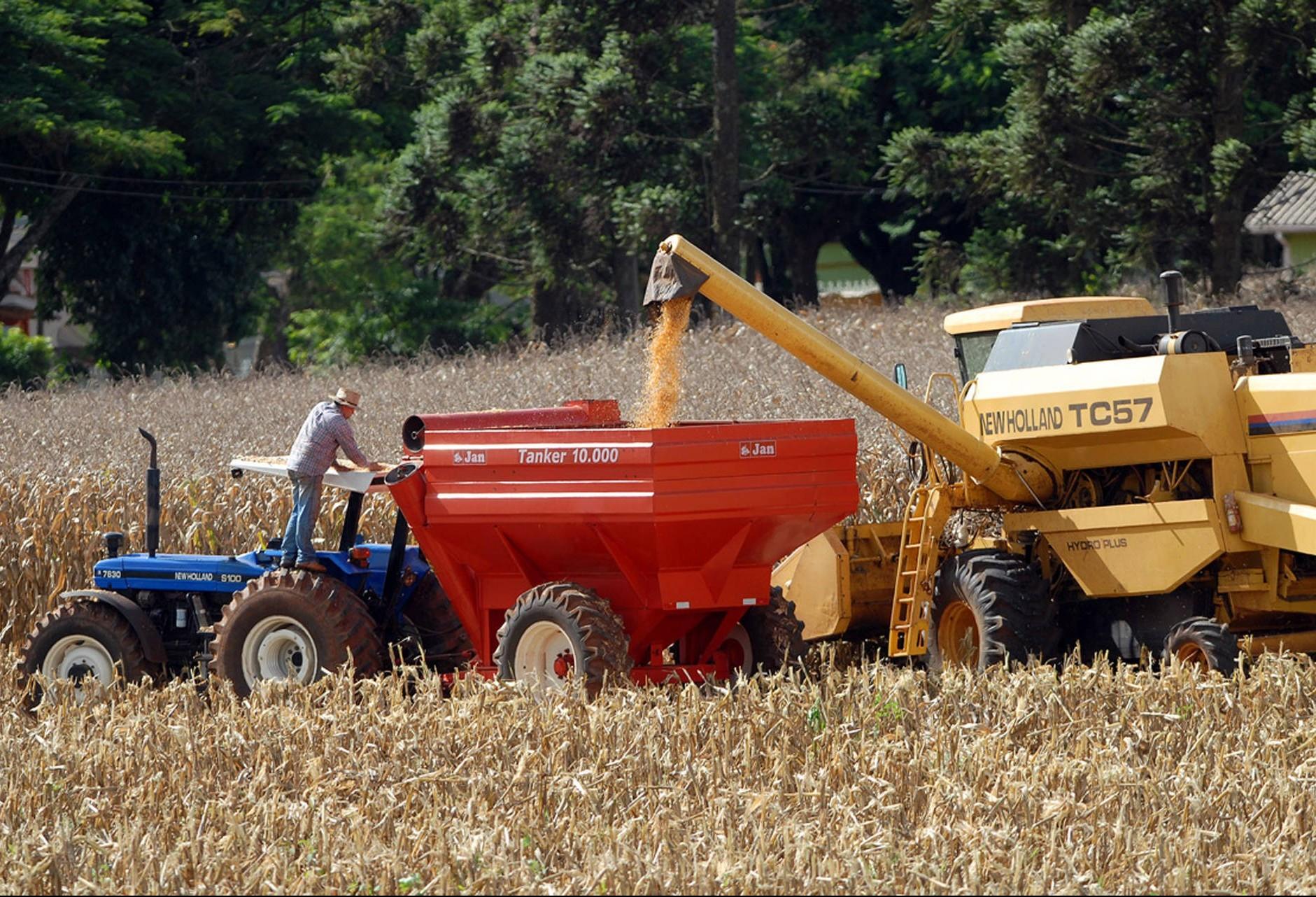 Brasil deve colher 237 milhões de toneladas de grãos na safra 2018/19