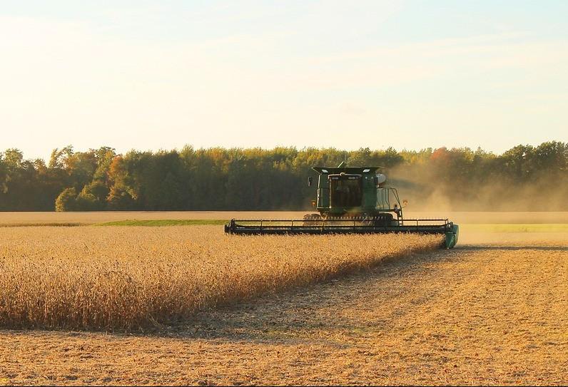 Soja preocupa produtores no sul do país