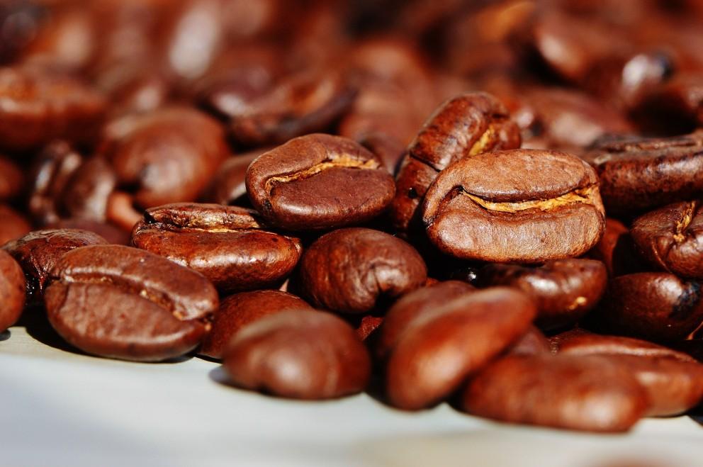 Produção de café safra 2017, rendeu 28 sacas de café beneficiada