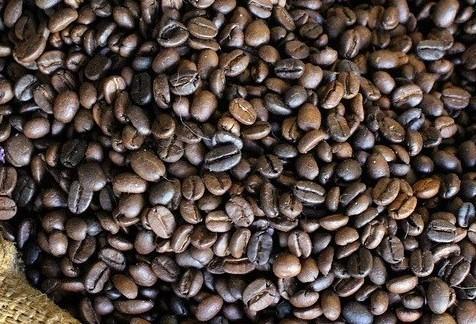 Café em coco custa R$ 6,17 o quilo em Maringá