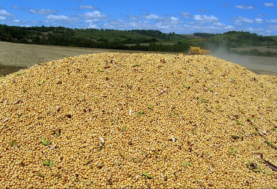 Estoque de grãos em relação ao consumo deve cair na próxima temporada