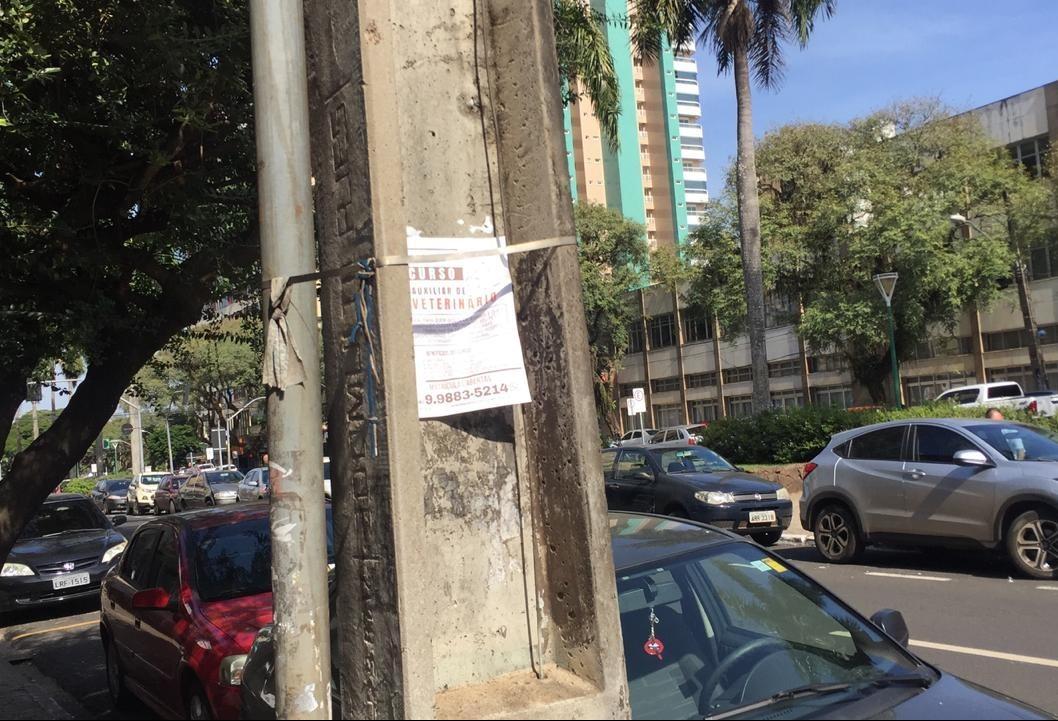 Vereador pede fiscalização para coibir panfletos e cartazes em postes e árvores de Maringá