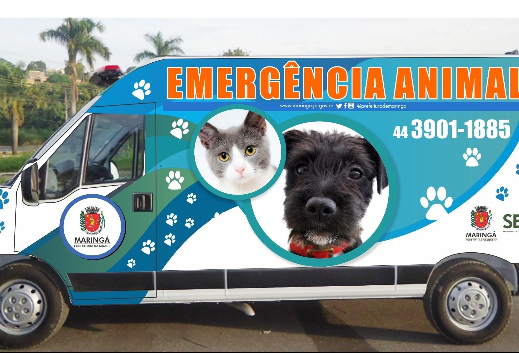 Novo serviço da Secretaria de Meio Ambiente e Bem-Estar Animal começa a funcionar